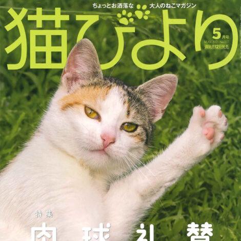 『猫びより』で「ツボ押し美容 肉球で顔まわりすっきり」が紹介されました。